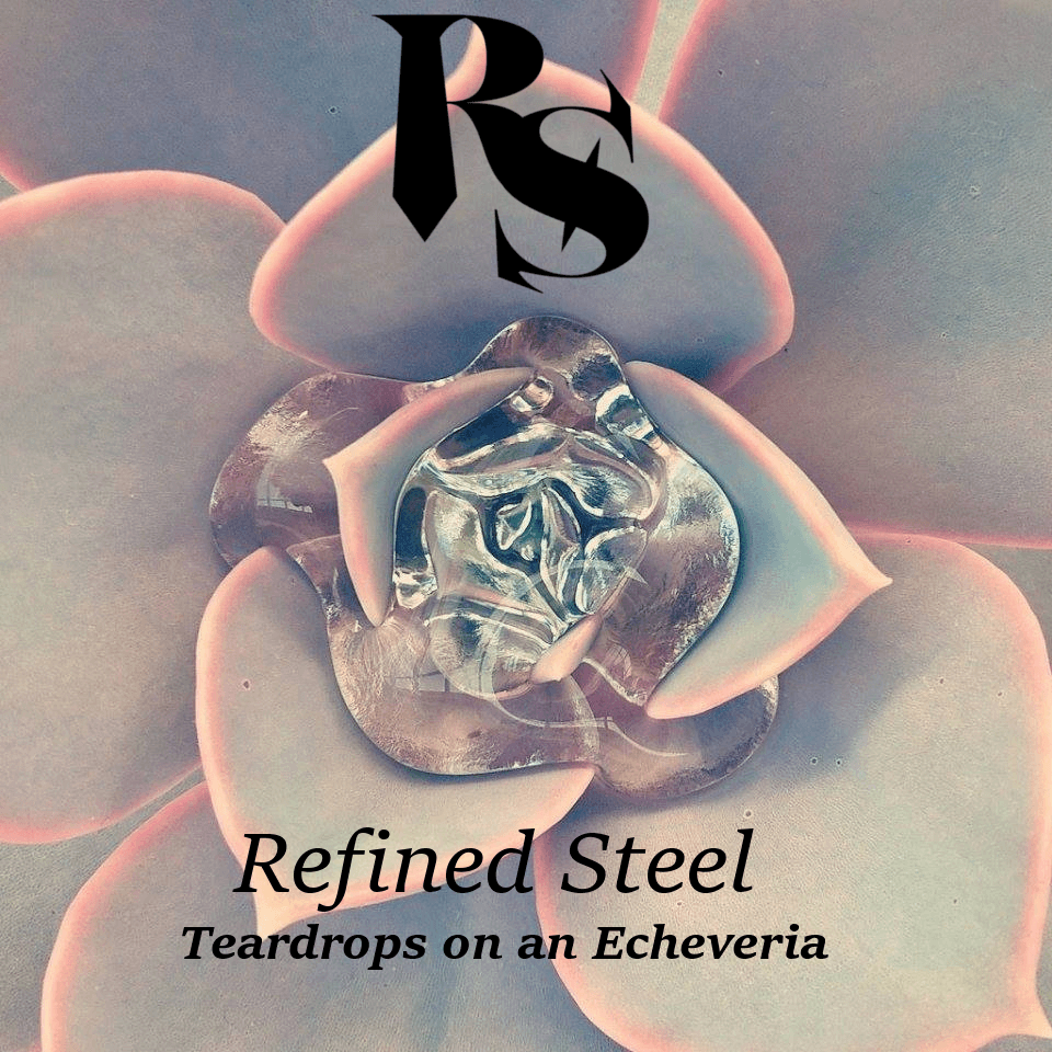 Teardrops on an Echeveria – Single Cover (smaller)